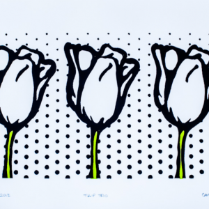 White Tulip Trio