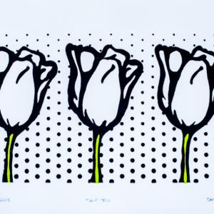 White Tulip Trio